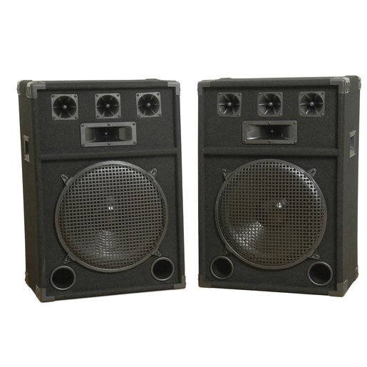 15inch Party Speaker