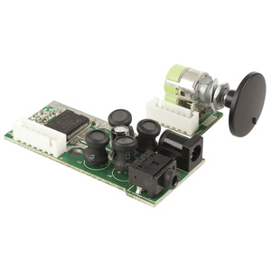 Class-T Digital Audio Amplifier Module